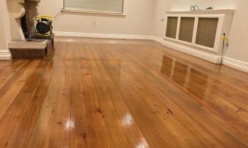 Dustless Floor Sanding - What is dustless floor sanding?