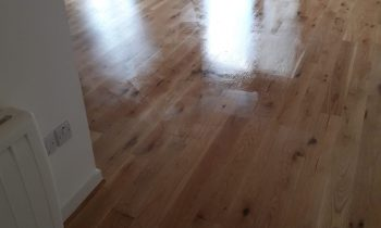 Factors Affecting The Floor Sanding Process